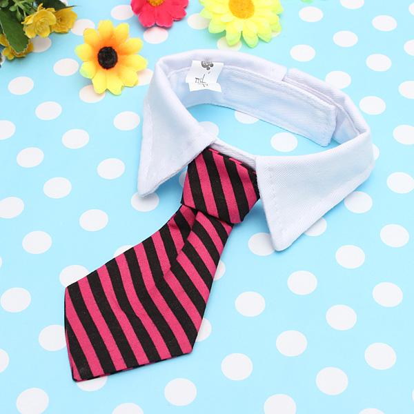 Vestido Pet gravata Collar
