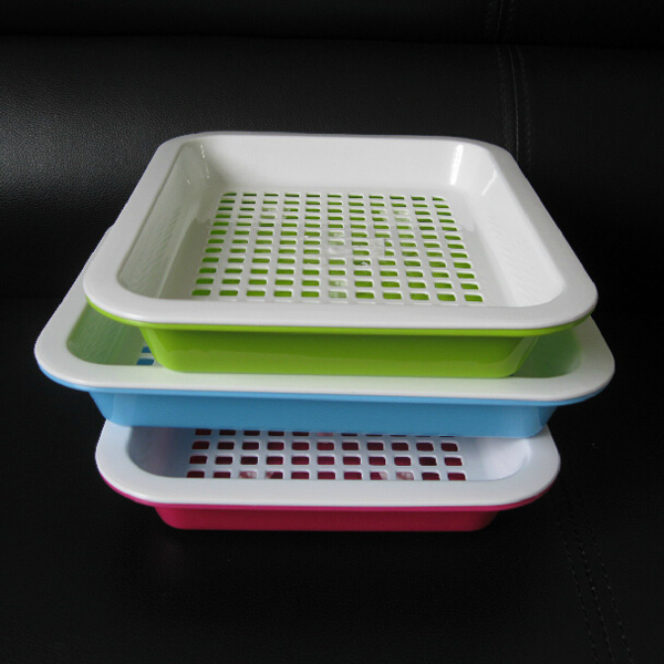 Seeds Sprout Tray