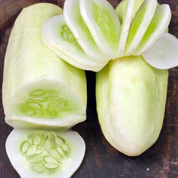 Egrow 50 Pcs/Pack White Cucumber Seeds Garden Balcony Vegetable Fruit Cucumber Seed Planting