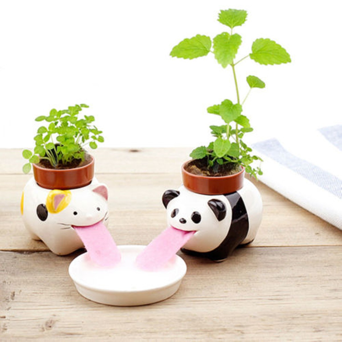 diy mini ceramic animal tougue self watering potted plant. Black Bedroom Furniture Sets. Home Design Ideas