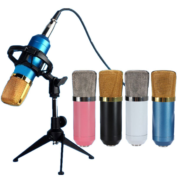 BM700 Condenser Microphone Dynamic Recording with Shock Mount community based disaster assessment