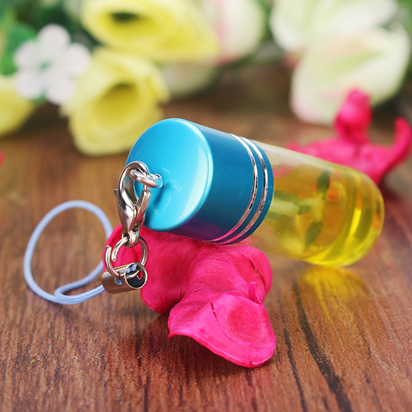 Desktop Glass Bottle Mini Pet Plant Wedding Birthday Lover Gift