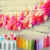 5Pcs Tissue Paper Tassels Garlands Bunting Ballroom Wedding Party Home Decoration
