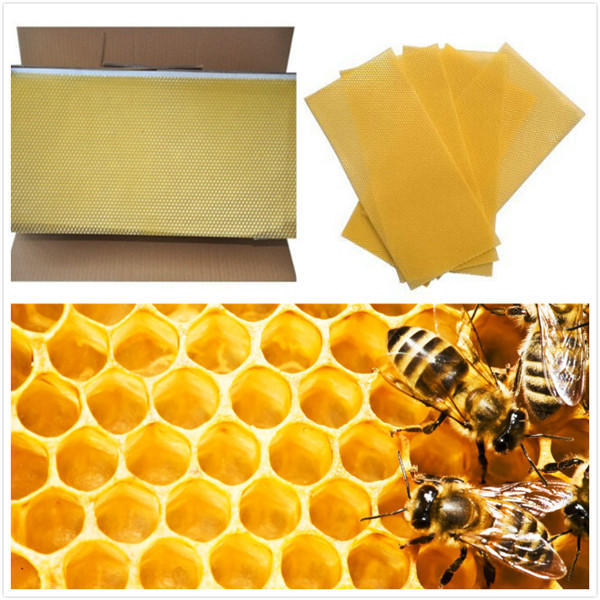 30Pcs Honeycomb Foundation Beehive Wax Frames