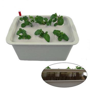 Mini ossigeno 11 buche scatole cultura dell'acqua piantine fuori suolo scatole impianto di coltivazione