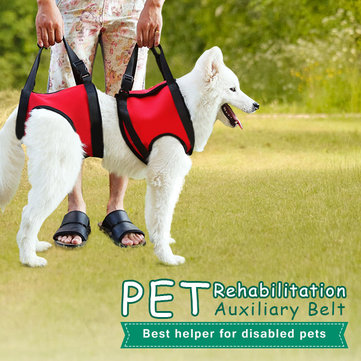 Pet Auxiliary Belt Dog Harness Carriers Assist Sling Portable Lift Security Support Rehabilitation