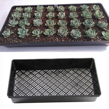 54cm Rectangle Bean Sprout Growing Tray PP Plastic Garden Nursery Seedling Plate