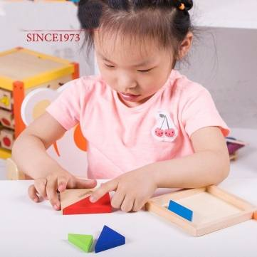 Buy MWSJ Wooden Seven Piece Puzzle Jigsaw Tangram Brain Teasers Baby Toy
