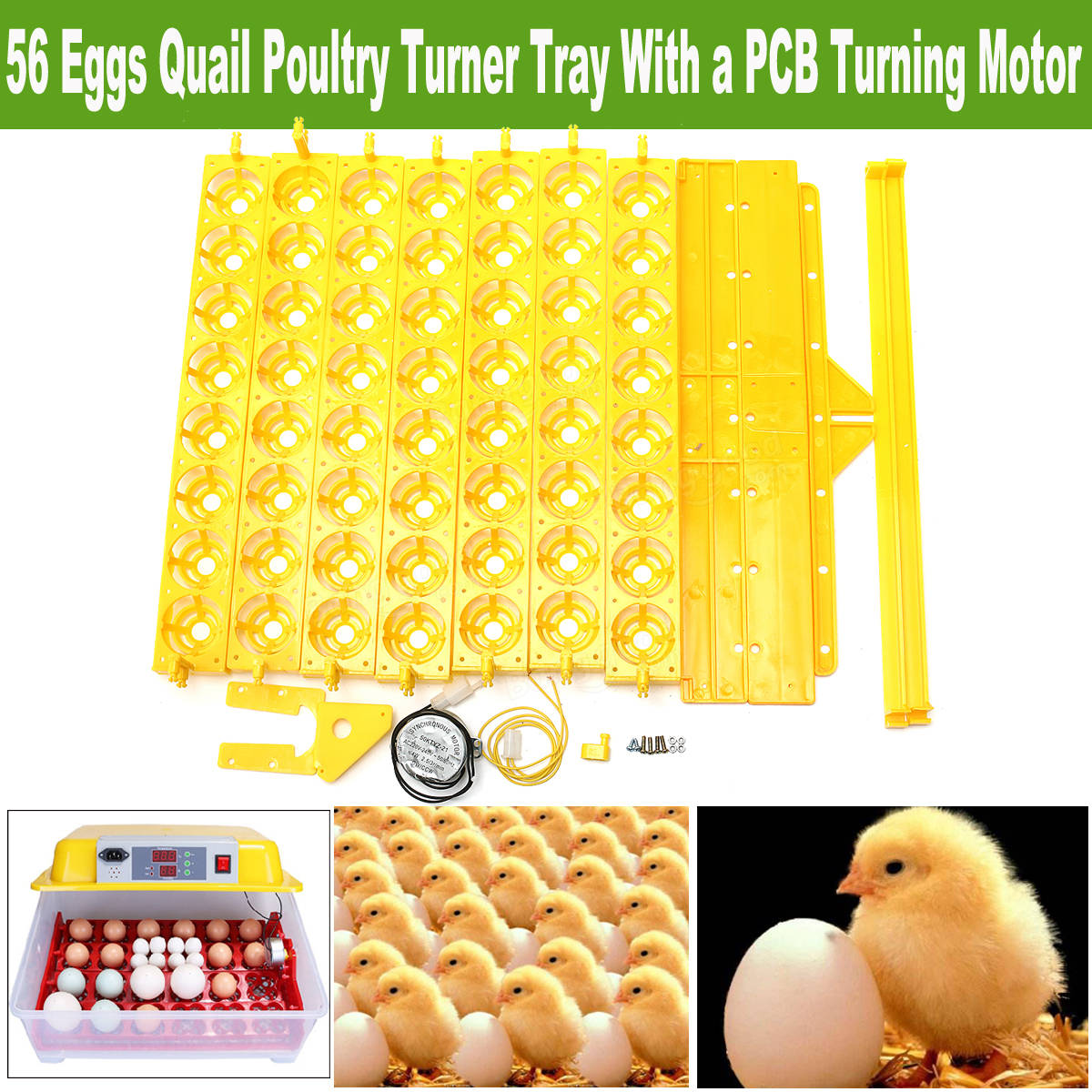 55 Incubator Automatic Eggs Turner Tray With Teching Equipment 220V Motor Farm Tool