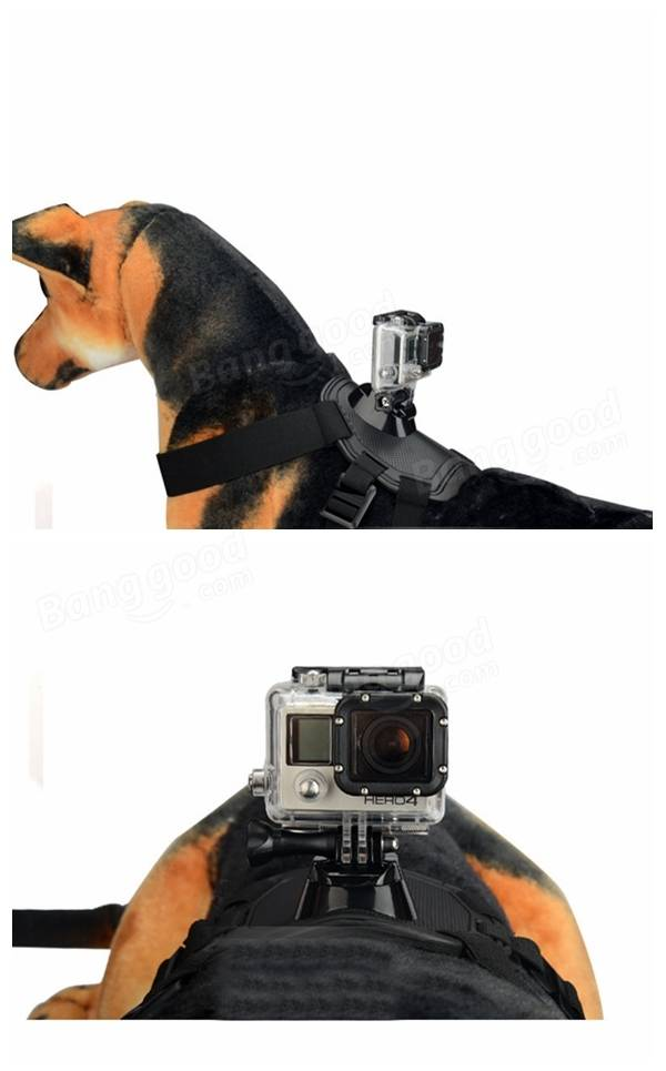 Pet Dog Fetch Chest Harness Strap Mount Belt for GoPro Hero Xiaomi Yi Sport Camera