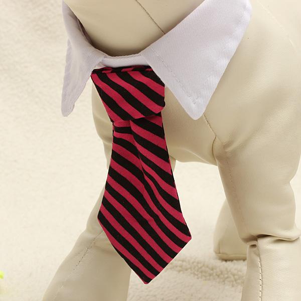 Pet Dress Necktie Collar