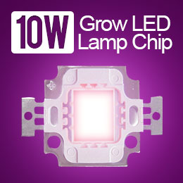 Grow Light-Right