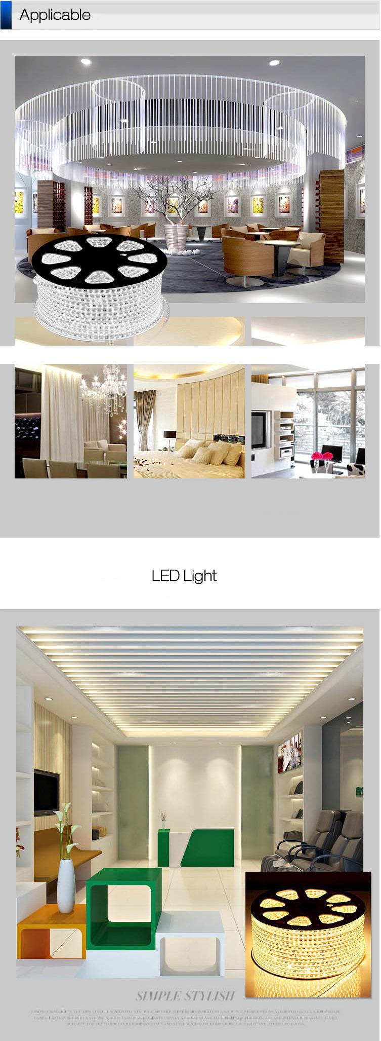 1 x 1M 220V LED Strip Light