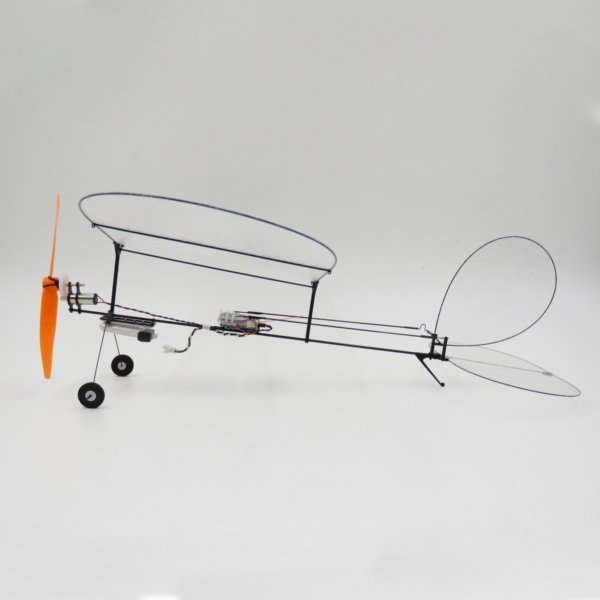 TY Model Black Flyer V1.1 Carbon Fiber Film RC Airplane With Power System - Photo: 2