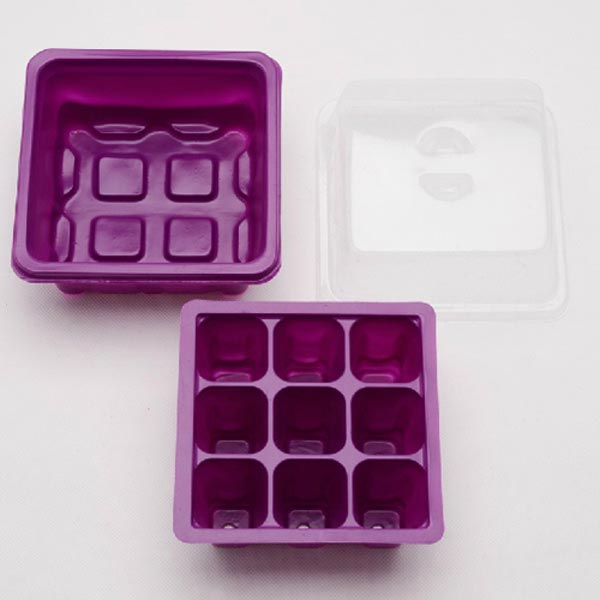 9 Holes Plastic Seedling Box Kit with Mixture Soil for Succulent Plant Sowing