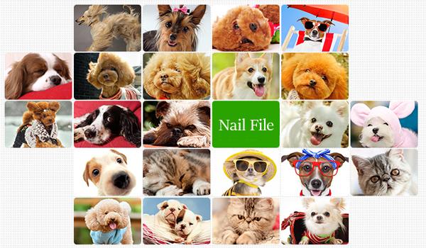 Pet Nail File Cat Dog Nail Clean Beauty Care Tools