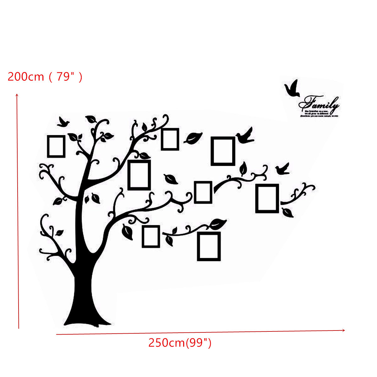 Memory Tree Photo Wall Sticker Living Room Home Decoration - Diy wall decor birds