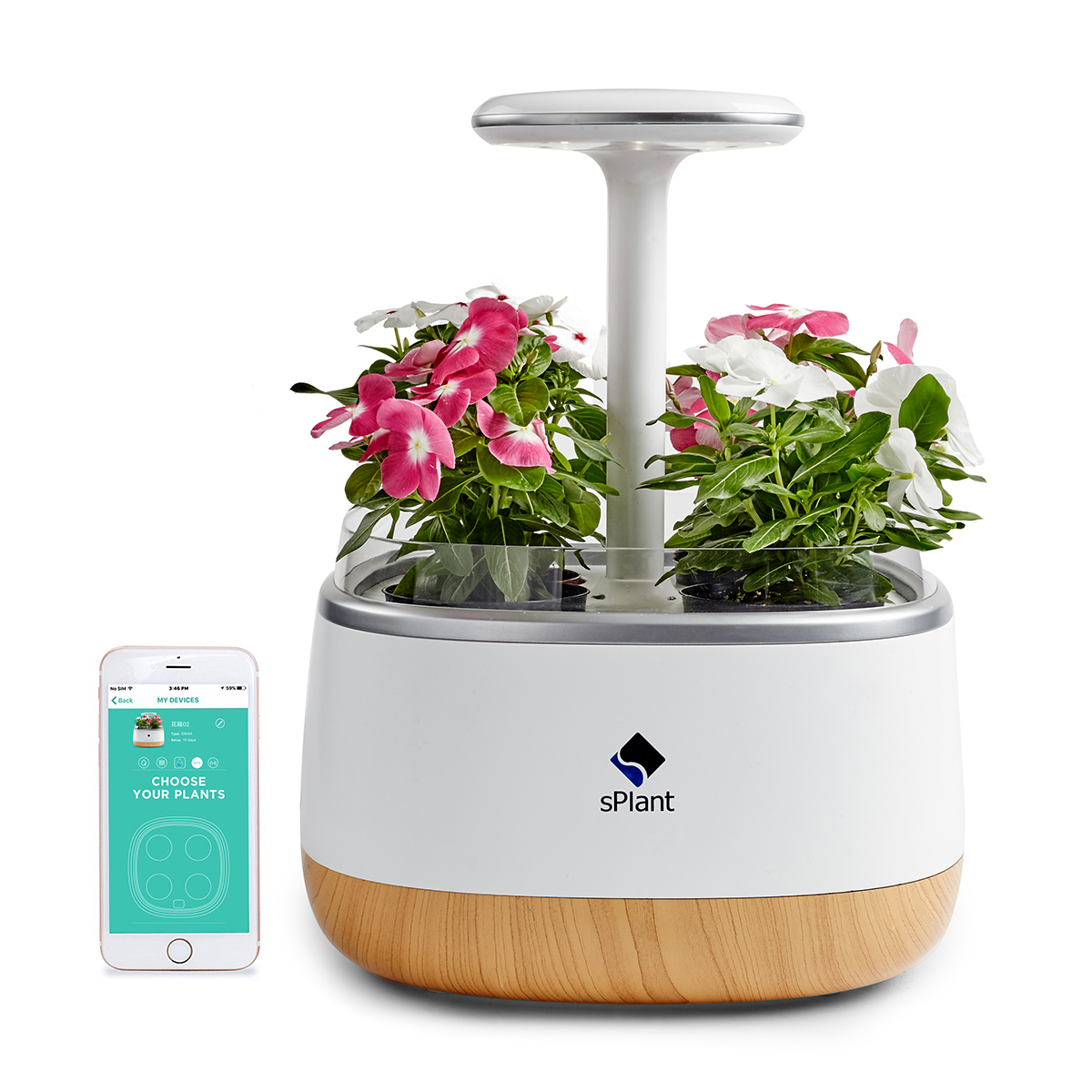 sPlant Smart Fresh Herb Garden Kit Intelligent Indoor Sprout luz LED Garden Cuatro Flower Pot con aplicación