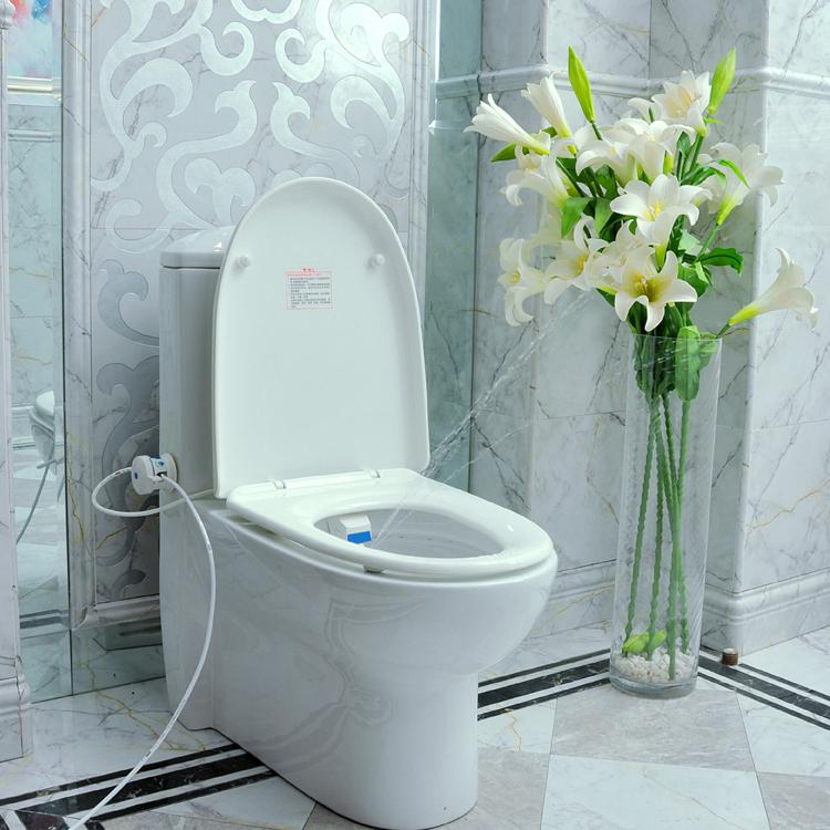 Heshe Bathroom Smart Toilet Seat Bidet Intelligent Toilet