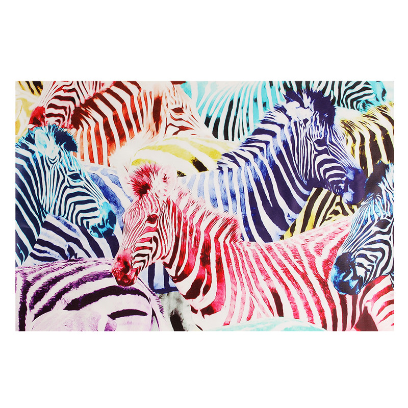 Holiday Decoration Multicolored Zebra Patterns Picture Home Decorations